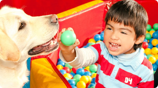 dental management of autistic child Dental management of autistic children e598 journal section: medically compromised patients in dentistry publication types: research dental care protocol based on.